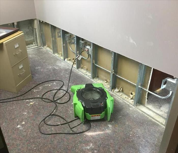 University - Mold Remediation After