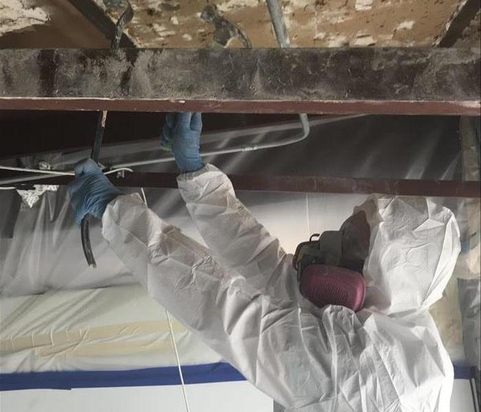 Mold Remediation Mold Continuing Education